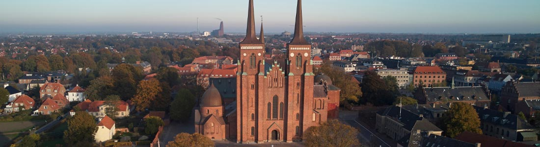 Taxa Roskilde